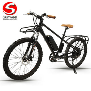 Electric Cargo Mountain Bicycle