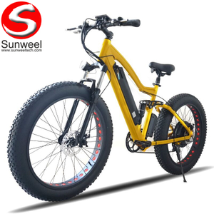 48v 750w Fat Tire Beach Cruiser Bicycle