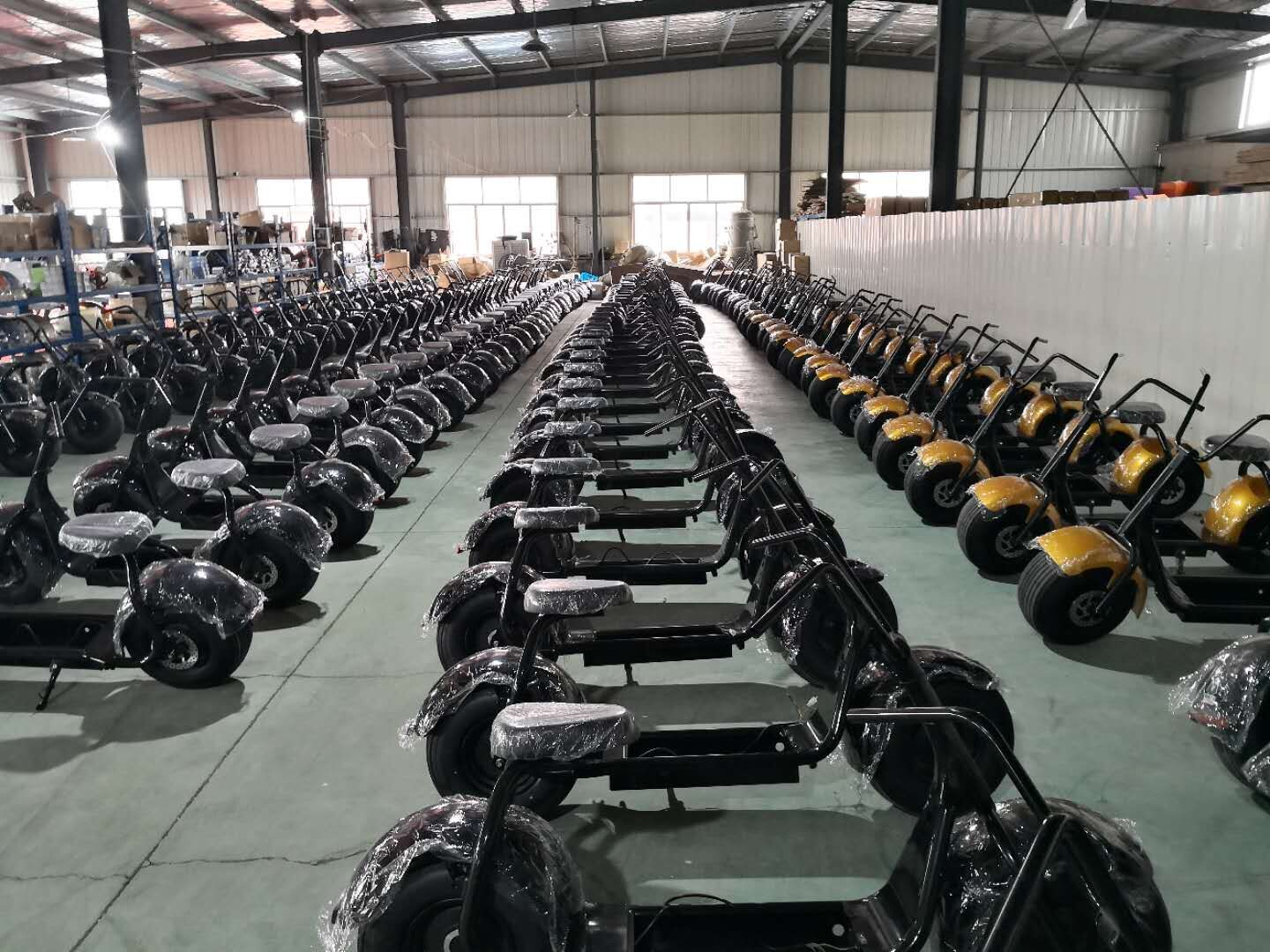 Production of electric scooter in March